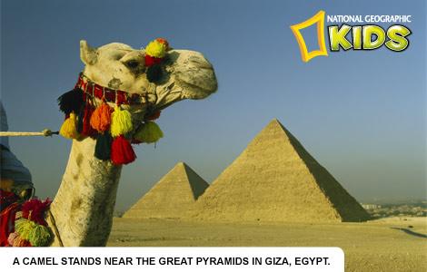 giza-pyramids-976150-ecard