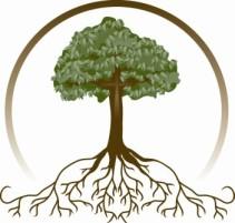 tree-roots_000